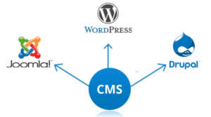 cms-development-pune-pcmc